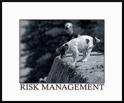 Riskvsreward