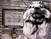Lion of truth, by ktylerconk