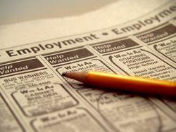 EmploymentSmall
