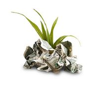 Money LTI