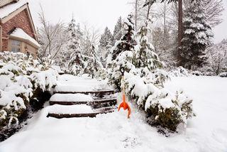 4447725_snow