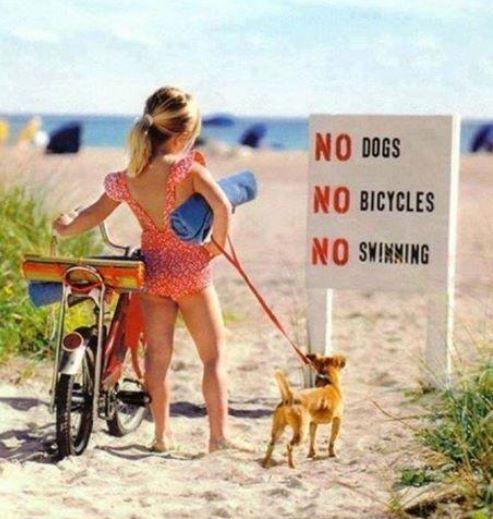 No swimming no