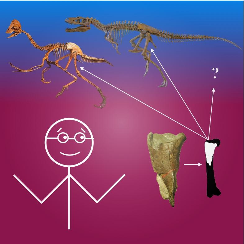 Stickman Paleontologist
