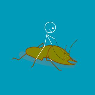 Stickman - termite inspection-20200702