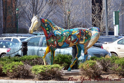 Colorful Horse  by New York Provider.net