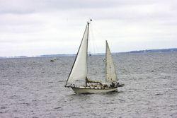 Sailing  by Bruce Tuten